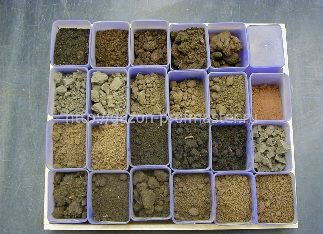 Сделать анализ почвы в домашних условиях